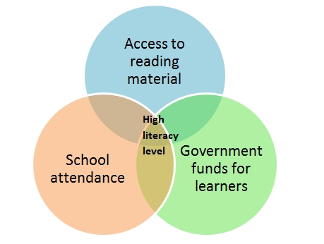 The key factors to achieve a high literacy level in a country