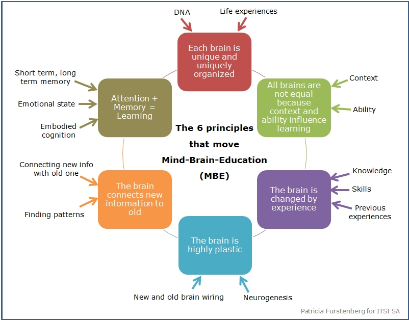 The Six Principles That Move Mind, Brain, Education #MBE #edchat #techchat #education via @PatFurstenberg