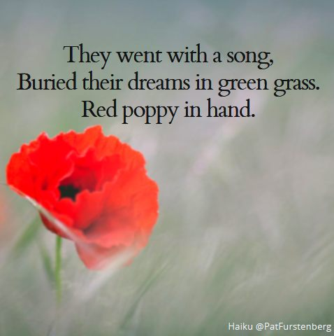 Red Poppy Haiku via @PatFurstenberg #Remembrance2018 #LestWeForget #ThankYou100 #RemembranceDay2018 #ArmisticeDay100