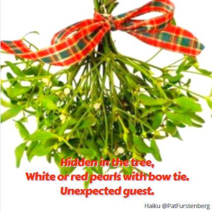 Mistletoe, #Christmas #Haiku #Sunday #HaikuSan via @PatFurstenberg
