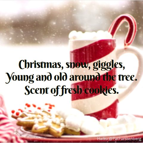Cookies, #Christmas #Haiku via @PatFurstenberg