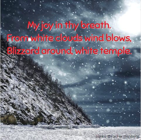 Blizzard, #Christmas #Haiku via @PatFurstenberg