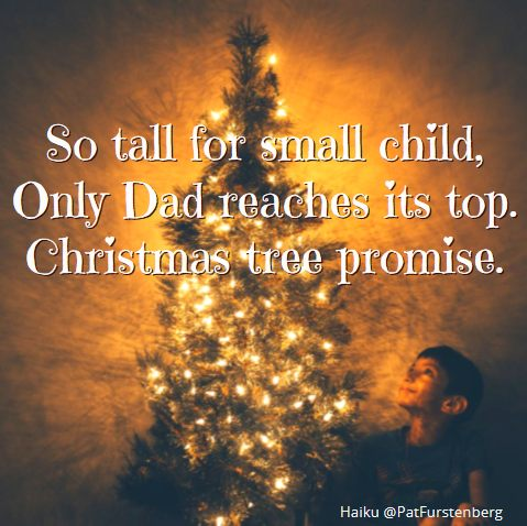 Christmas Tree and Saint Nicholas, #Christmas #Tree #Nicholas #gift #shoe #Haiku via @PatFurstenberg