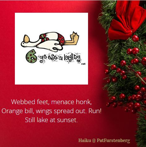 6th Day of Christmas Haiku, Haiku-San #Christmas, #Haiku, #geesealaying, #haikusan, #sunday via @PatFurstenberg