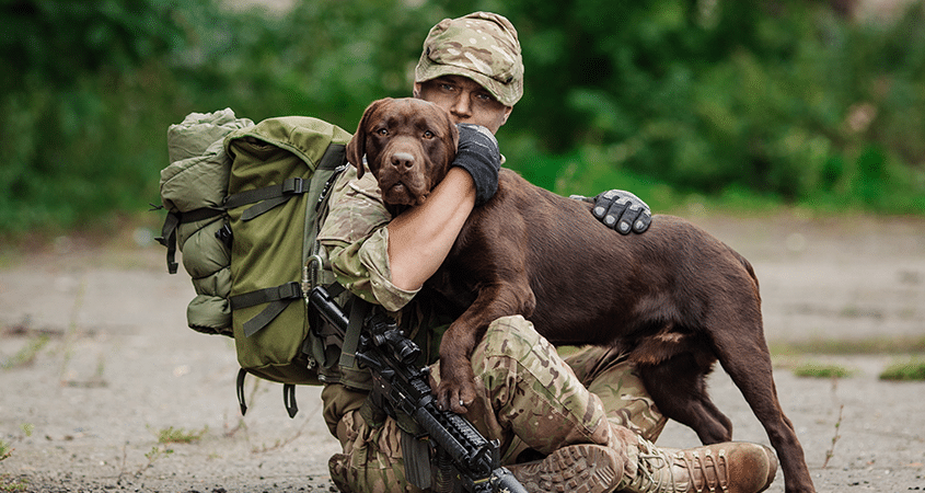 Silent Heroes, Military Working Dogs of Afghanistan and the Marines who stood by them