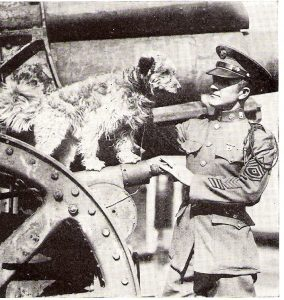 Dog Mascots of WW1 and Their Cute Faces. Dog Hero - Rags with Sergeant George E. Hickman, 16th Infantry, 26th Division.