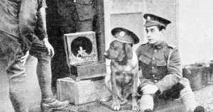 The mascot dog of a regiment at the front listening attentively to a recruiting appeal on the gramophone.