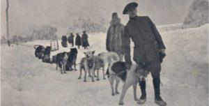"""Amazing Roles dogs Played During WW1, part 3: Sled Dogs, Pulling Dogs. Poilus D'Alaska, """"The Infantry from Alaska"""""""