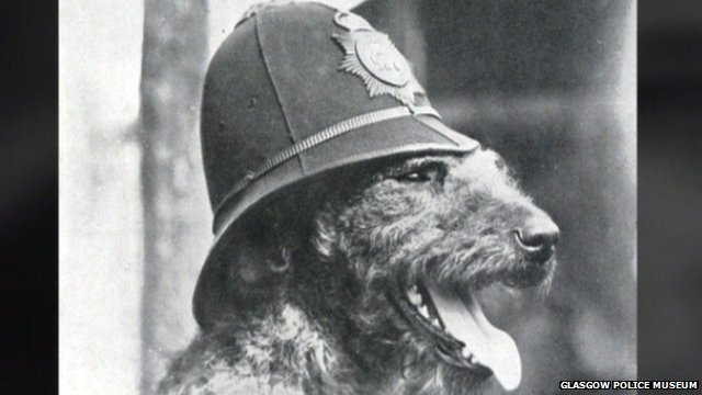 Edwin Richardson trained Airedale terriers for the police in Glasgow before supplying canine recruits for World War I. Source bbc