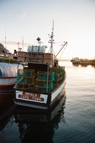 Kalk Bay Harbour, Cape Town, South Africa, image by @timalanjohnson free on Unsplash.jpg