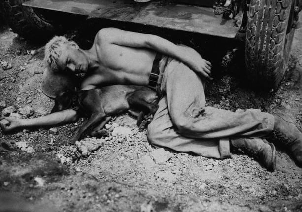 Soldiers and their pets, WW2, 1945, Japan, Okinawa. Source History Collection