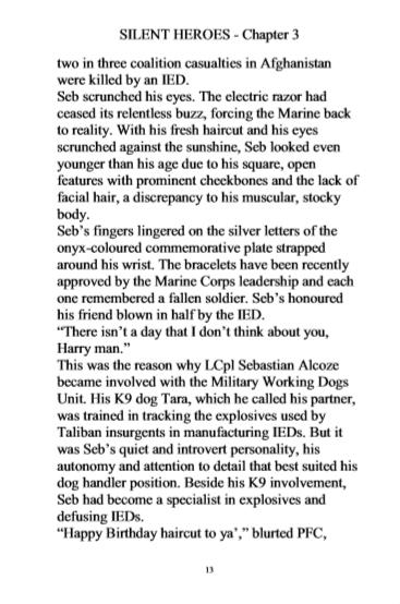 Silent Heroes, LARGE PRINT - PDF viewer