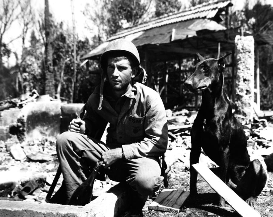An US Marin Corps combat soldier with his K9 and buddy Doberman. Image by Peter Gumaer, Ogden