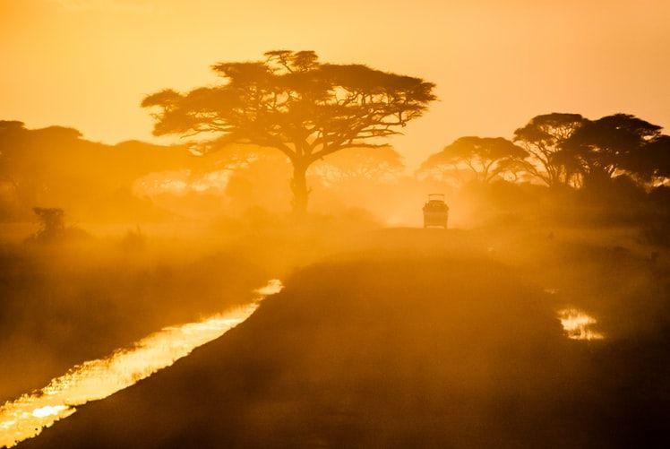 amber Safari from Arabic sfariya