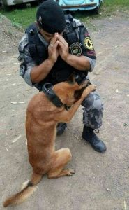 soldier and dog pray together. silent heroes