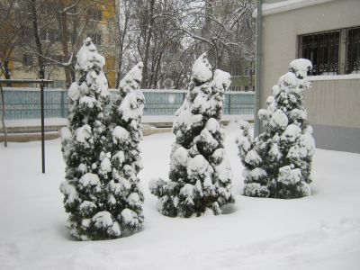 snow thousand faces meanings