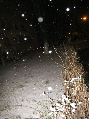 blizzard in the middle of the night