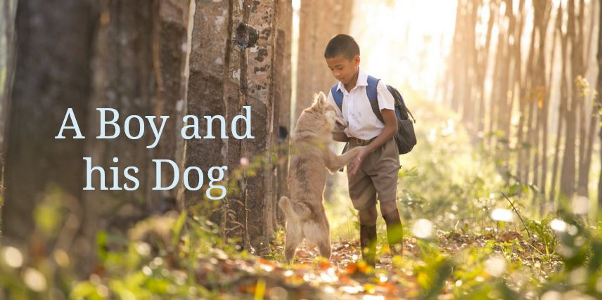 a boy and his dog poem
