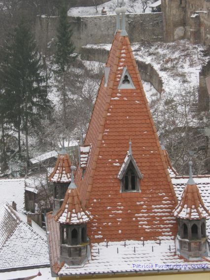 A typical  pointed roof viewed from the top of the Clock Tower, Sighisoara
