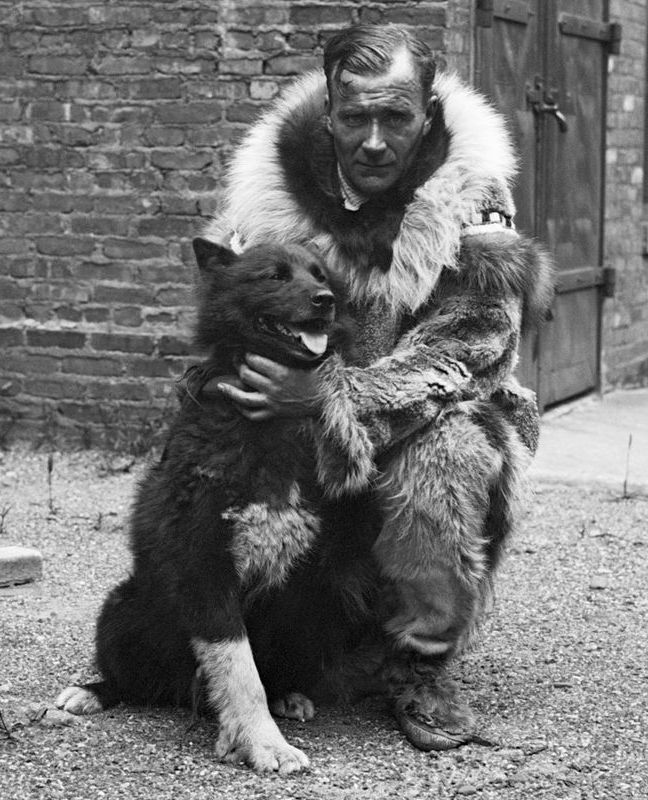 Celebrated sled dog Balto with Gunnar Kaasen 7 Dogs That Put their Paws on History