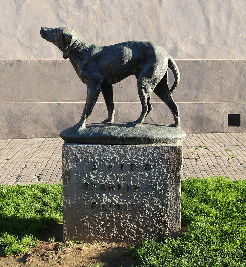7 Dogs That Left their Paws on History