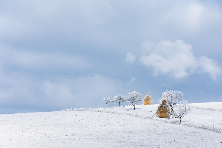 Snow covered realm Maramures