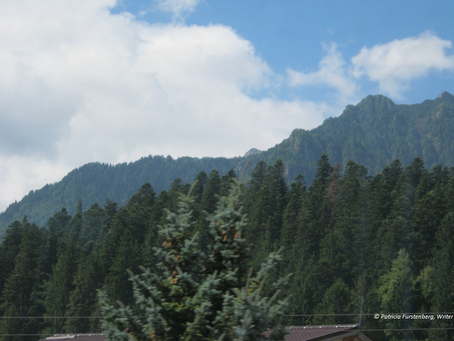 Travel to Romania via some Amazing Photos - evergreen, coniferous forests