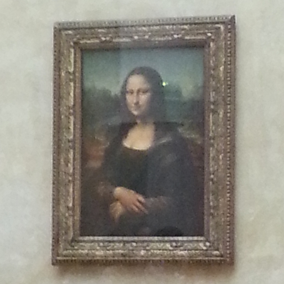 Through the Searching Eyes of Mona Lisa