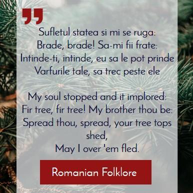 Transylvania, Romania, Its Origin and Etymology, fir tree symbology in Romanian folklore